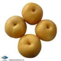 Sell Fengshui Pear
