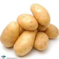 Sell Fresh potatoes for sale