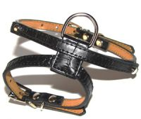 sell personalized dog harness