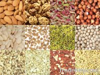 Sell High Quality Almond Kernel