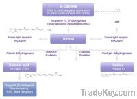 Sell retinol derivatives