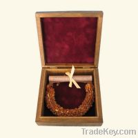 Sell Raw Baltic Amber Necklace - gentle