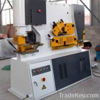 Sell Q35Y-16 Dual Cylinder Hydraulic universal multi-function iron wor