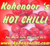 Sell Offer Dry Hot Chili