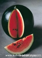 Sell Offer Water Melon Seeds