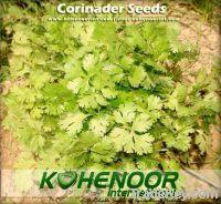 Sell Offer Coriander Seeds