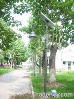 LED Solar Garden Light(CE RoHS) 6W