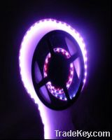 Yellow SMD 5050 Flexible LED Strip Lights 48PCS
