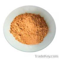 Sell  Ginkgo Biloba Extract