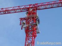 Luffing Tower Crane D300