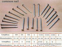 Iron Nail 003