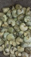 Raw Cashew Nuts 2019 Crop - Cote D'Ivoire origin