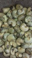 Raw Cashew Nuts 2019 Crop - Ghana origin