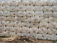Sell Raw Cotton Fiber