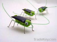 Sell solar grasshopper solar educational kit