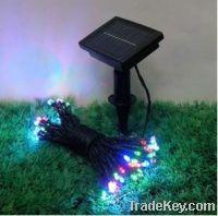 Sell High quality solar powered LED light string