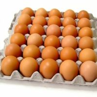 Fresh Chicken eggs of Small, Medium, Large size