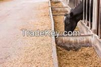 All types of Animal Feeds