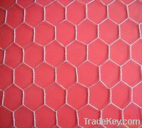 Sell hexagonal wire mesh