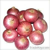 Sell onion