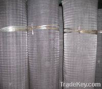 Sell Dutch woven wire cloth