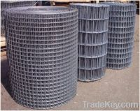 Sell High quality Galvanized welded wire mesh