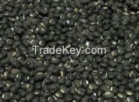 black matpe for sale