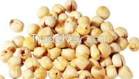 lotus seeds for sale