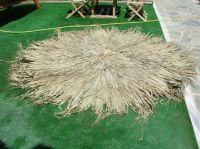 fun palm hat