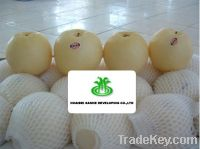 Sell Gold pear