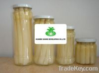 Sell Canned White Asparagus