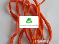 Sell Dehydrated Carrot Strip