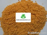 Sell Dehydrated Carrot Powder B level