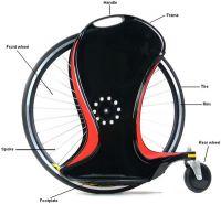 Sell Magic Wheel(FIT0023 ADULT)