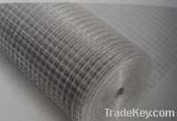 Sell Hot-dipped Galvanized Welded Wire Mesh