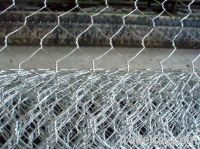 Sell Galvanized Poultry Wire