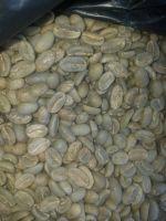 Coffee Beans, Coffee  Powder, Organic Coffee  Beans And Powder