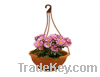 Used Plastic Hanging Flower Pots