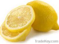 Sell fresh lemon