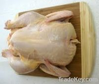 Sell whole round/quarter chicken
