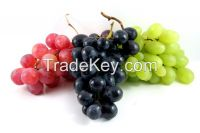 Orchard fresh attractive grapes