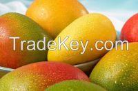 Fresh Mango (Processed / Washed)