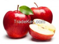 Wholesale price apple fruit from South Africa/Fresh Apples