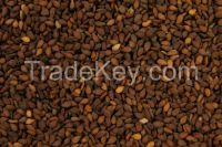 Crushing Quality Natural Sesame Seed - White / Brown/ Mixed Sesame seed