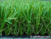 Sell lawn turf