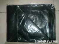 Sell HDPE Tarpaulin