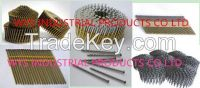 wire collated coil nail, plastic/paper strip nail, pallet coil nail, stainless steel nail, lost /domed head nail, copper nail