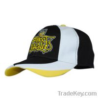 Sell 100%cotton baseball cap