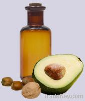 Sell best quality  Avocado Oil