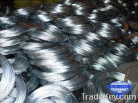 Sell stock galvanized iron wire galvanized binding wire electro wire